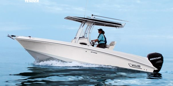 Boston_Whaler_220_Outrage